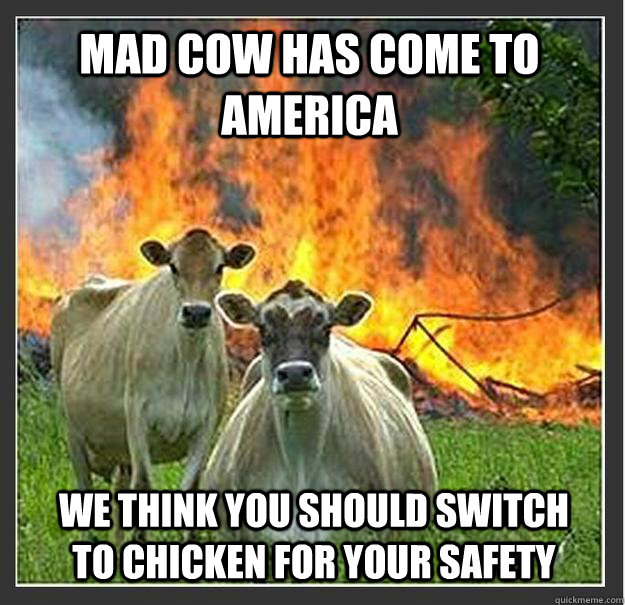 Mad Cow has come to America We think you should switch to chicken for your safety - Mad Cow has come to America We think you should switch to chicken for your safety  Evil cows