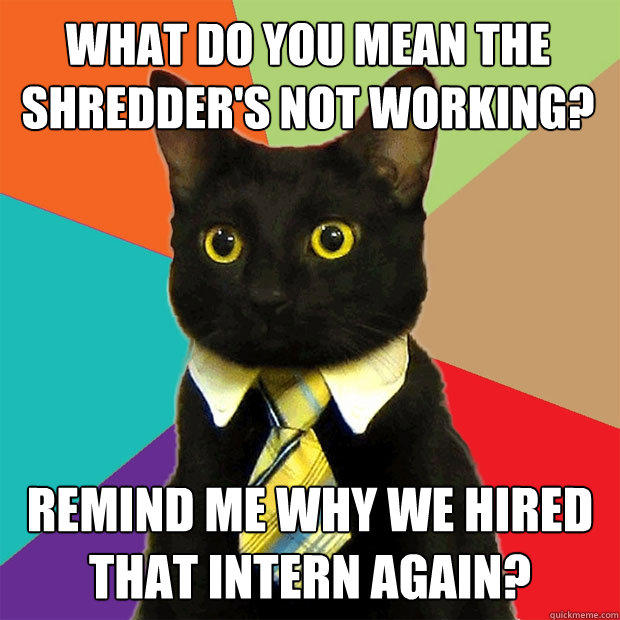What do you mean the shredder's not working? Remind me why we hired that intern again? - What do you mean the shredder's not working? Remind me why we hired that intern again?  Business Cat