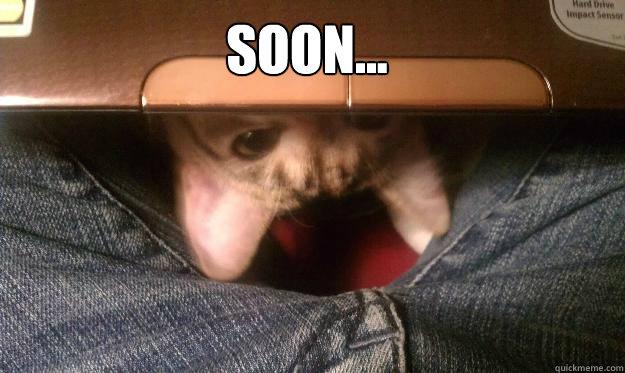 Soon...  Soon
