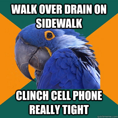 walk over drain on sidewalk clinch cell phone really tight - walk over drain on sidewalk clinch cell phone really tight  Paranoid Parrot