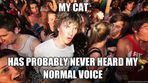 My cat  has probably never heard my normal voice - My cat  has probably never heard my normal voice  Sudden Clarity Clarence