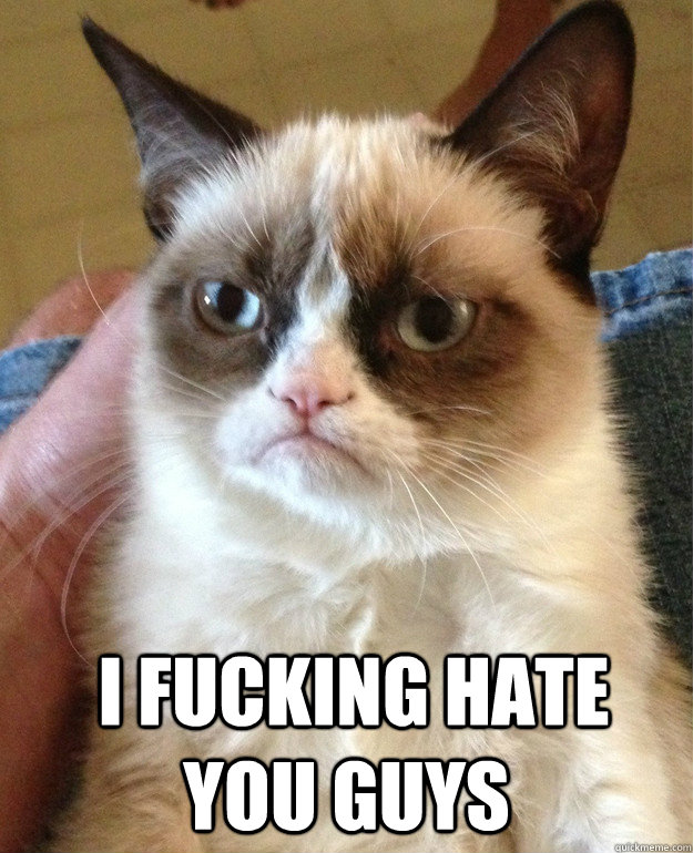 I fucking hate you guys -   I fucking hate you guys  Grumpy Cat