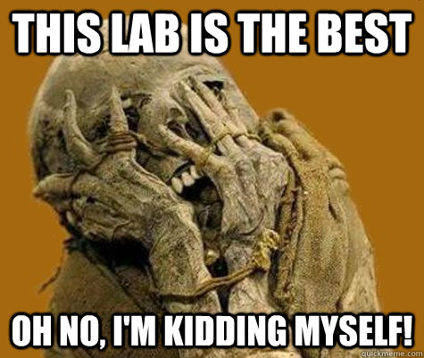 this lab is the best oh no, i'm kidding myself!