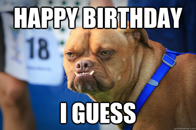 happy birthday i guess - happy birthday i guess  pabst the angry boxer