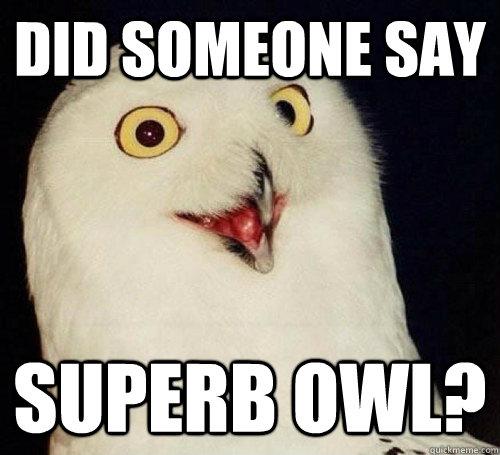 Did someone say Superb Owl?  Superb Owl