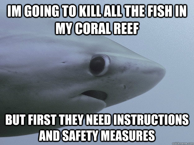 IM going to kill all the fish in my coral reef but first they need instructions and safety measures - IM going to kill all the fish in my coral reef but first they need instructions and safety measures  Shy Shark