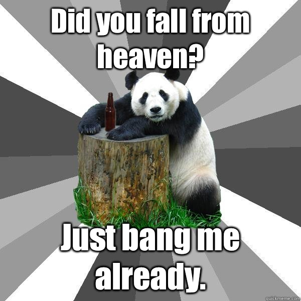 Did you fall from heaven? Just bang me already. - Did you fall from heaven? Just bang me already.  Pickup-Line Panda