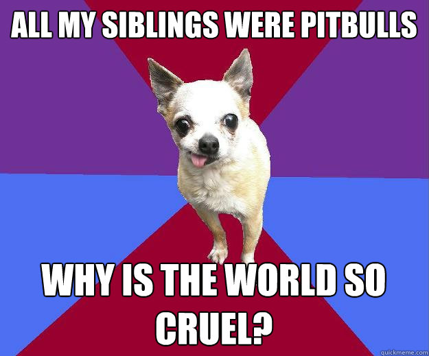 25 Best Memes About The World Is Cruel: All My Siblings Were Pitbulls Why Is The World So Cruel