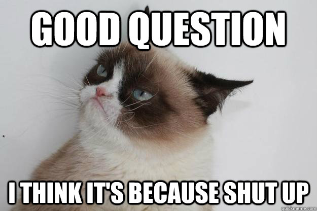 Good Question I think it's because shut up - Good Question I think it's because shut up  Philosophical Grumpy Cat
