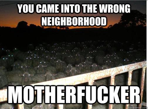 You came into the wrong neighborhood motherfucker - You came into the wrong neighborhood motherfucker  Motherfucking sheep