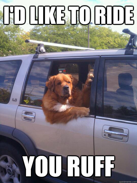 I'd like to ride You Ruff