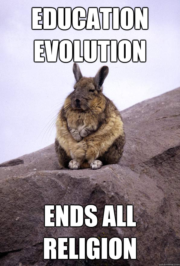 EDUCATION EVOLUTION ENDS ALL RELIGION  Wise Wondering Viscacha