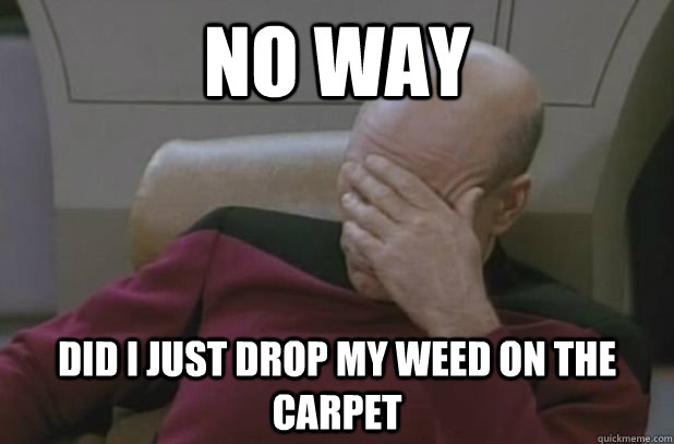 No way  did i just drop my weed on the carpet - No way  did i just drop my weed on the carpet  face palm