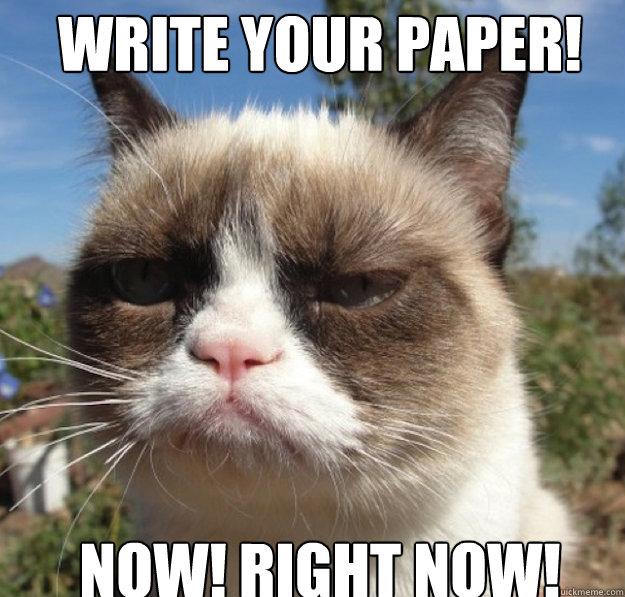 Write Your Paper Meme