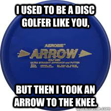 I Used to be a disc golfer like you, but then i took an arrow to the knee. - I Used to be a disc golfer like you, but then i took an arrow to the knee.  skyrim disc golf