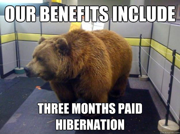 Our benefits include  three months paid hibernation - Our benefits include  three months paid hibernation  Office Grizzly