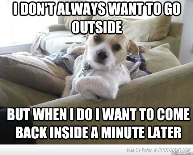 I don't always want to go outside But when I do I want to come back inside a minute later  The Most Interesting Dog in the World