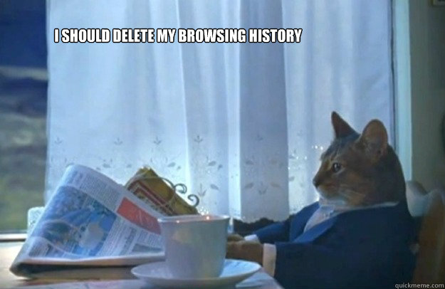 I should delete my browsing history - I should delete my browsing history  Sophisticated Cat