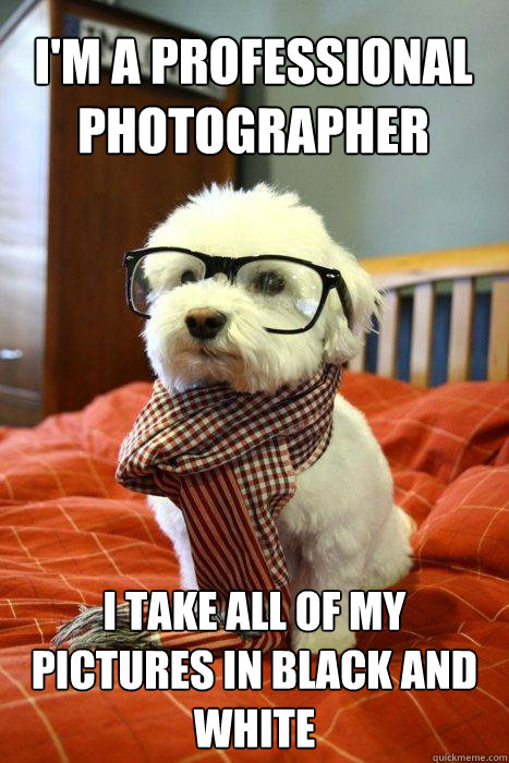 I'm a professional photographer I take all of my pictures in black and white - I'm a professional photographer I take all of my pictures in black and white  Hipster pup