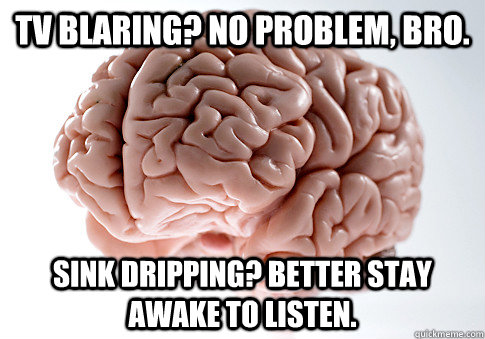 TV Blaring? No problem, bro. Sink dripping? Better stay awake to listen. - TV Blaring? No problem, bro. Sink dripping? Better stay awake to listen.  Scumbag Brain