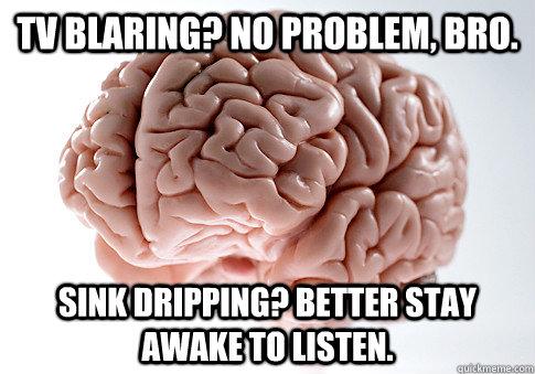 TV Blaring? No problem, bro. Sink dripping? Better stay awake to listen. - TV Blaring? No problem, bro. Sink dripping? Better stay awake to listen.  Scumbag Brain