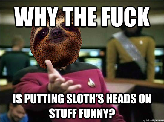 Why the fuck Is putting sloth's heads on stuff funny? - Why the fuck Is putting sloth's heads on stuff funny?  Misc