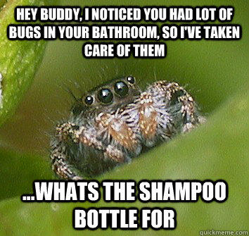 Hey buddy, I noticed you had lot of bugs in your bathroom, so I've taken care of them ...whats the shampoo bottle for  Misunderstood Spider