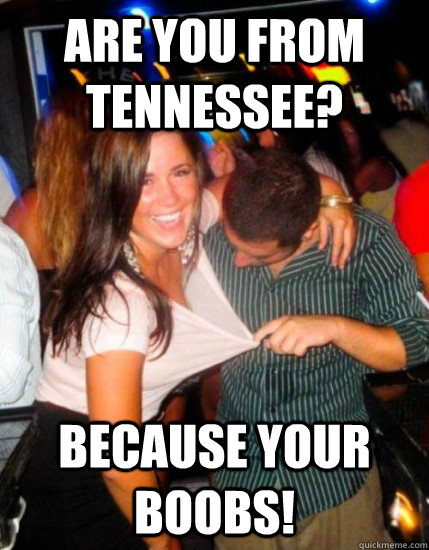 Are you from Tennessee? Because your boobs!