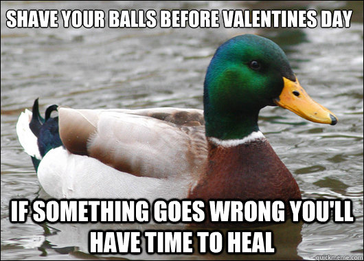 Shave your balls before valentines day If something goes wrong you'll have time to heal - Shave your balls before valentines day If something goes wrong you'll have time to heal  Actual Advice Mallard