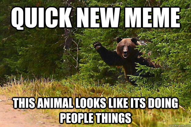 Quick New Meme this animal looks like its doing people things