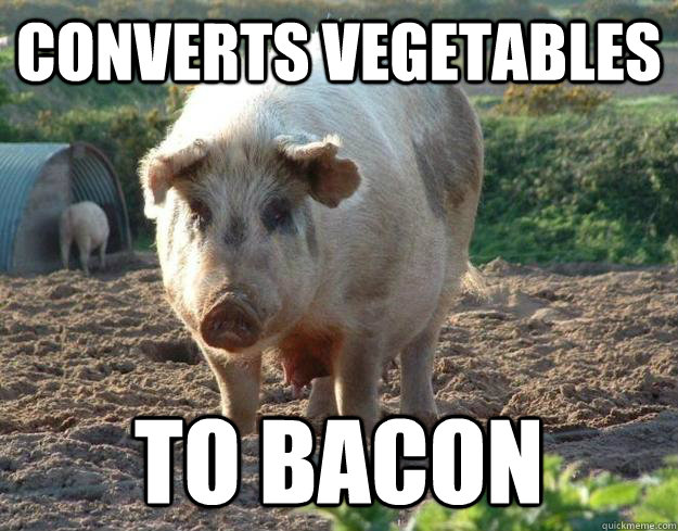 converts vegetables to bacon - converts vegetables to bacon  Misc