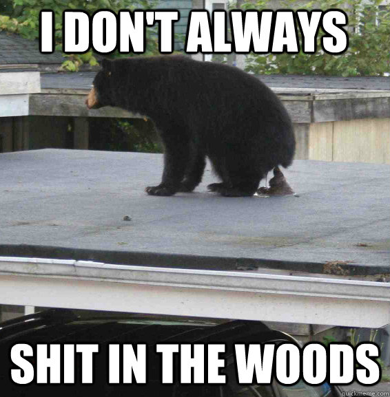 i don't always shit in the woods - i don't always shit in the woods  The Most Interesting Confession Bear in the World