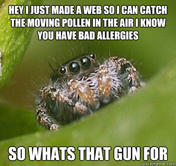 Hey i just made a web so i can catch the moving pollen in the air i know you have bad allergies so whats that gun for - Hey i just made a web so i can catch the moving pollen in the air i know you have bad allergies so whats that gun for  Misunderstood Spider
