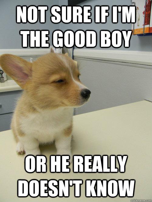 i m a good boy