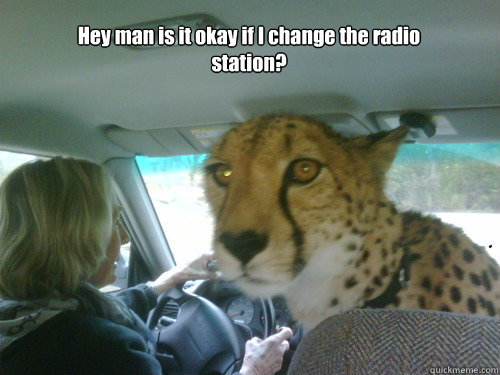 Hey man is it okay if I change the radio station?