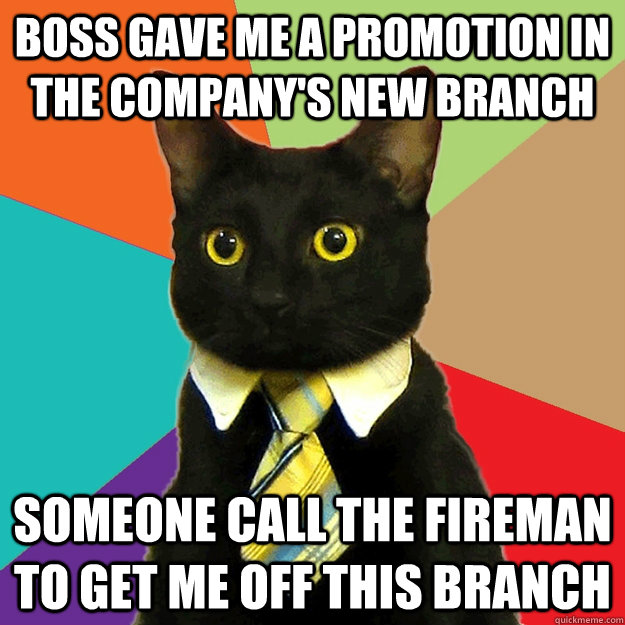 boss gave me a promotion in the company's new branch someone call the fireman to get me off this branch - boss gave me a promotion in the company's new branch someone call the fireman to get me off this branch  Misc