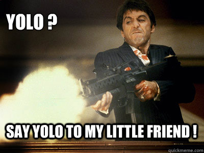 YOLO ? SAY YOLO TO MY LITTLE FRIEND !