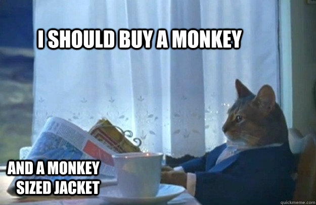 I should buy a monkey and a monkey sized jacket - I should buy a monkey and a monkey sized jacket  Sophisticated Cat
