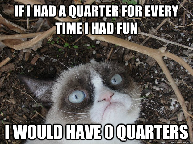 If I had a quarter for every time I had fun I would have 0 quarters - If I had a quarter for every time I had fun I would have 0 quarters  Misc
