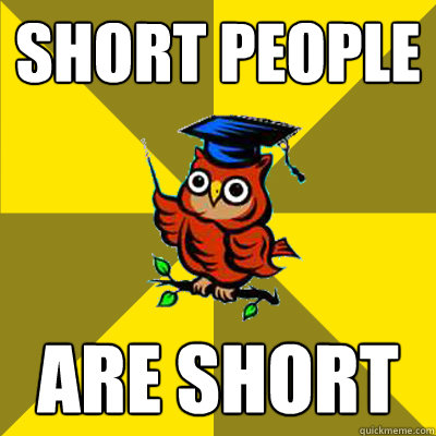 short people are short  Observational Owl
