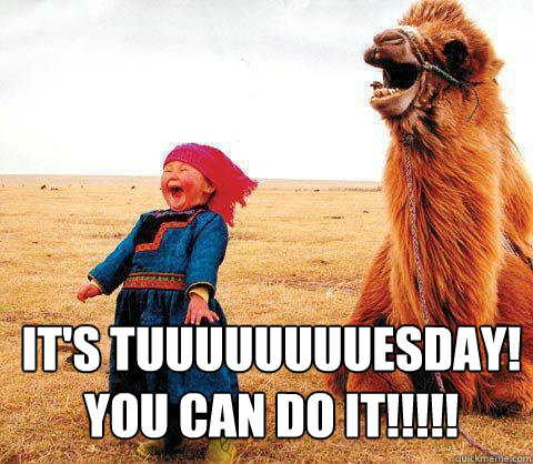 It's tuuuuuuuuesday! You Can Do It!!!!!  Its Tuesday