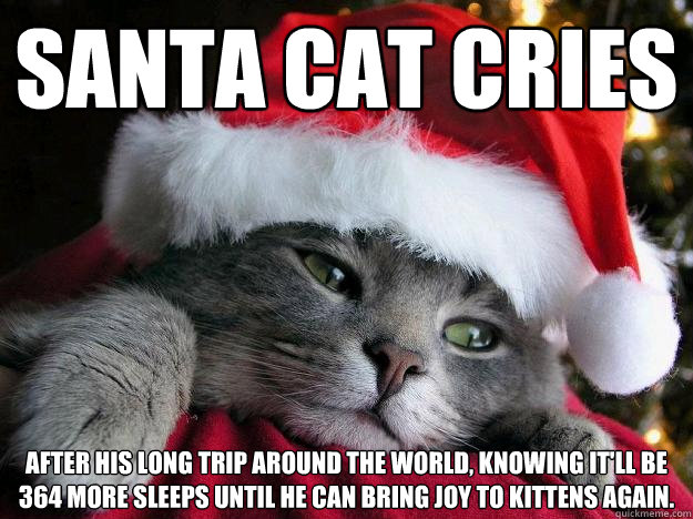 Santa cat cries after his long trip around the world, knowing it'll be 364 more sleeps until he can bring joy to kittens again. - Santa cat cries after his long trip around the world, knowing it'll be 364 more sleeps until he can bring joy to kittens again.  Sad Santa Cat