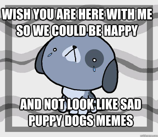 Wish you are here with me so we could be happy And not look like sad puppy dogs memes  Miss you
