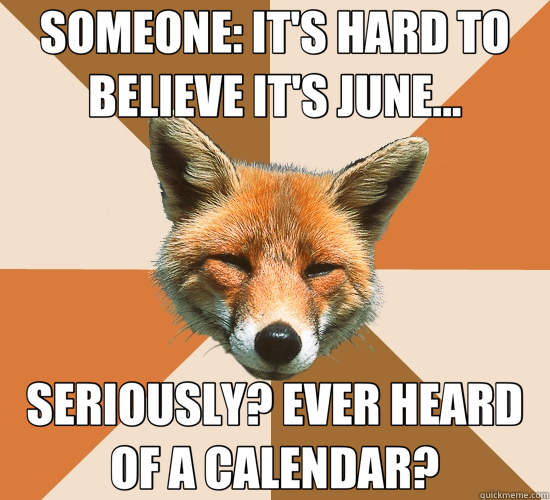 SOMEONE: IT'S HARD TO BELIEVE IT'S JUNE... SERIOUSLY? EVER HEARD OF A CALENDAR? - SOMEONE: IT'S HARD TO BELIEVE IT'S JUNE... SERIOUSLY? EVER HEARD OF A CALENDAR?  Condescending Fox
