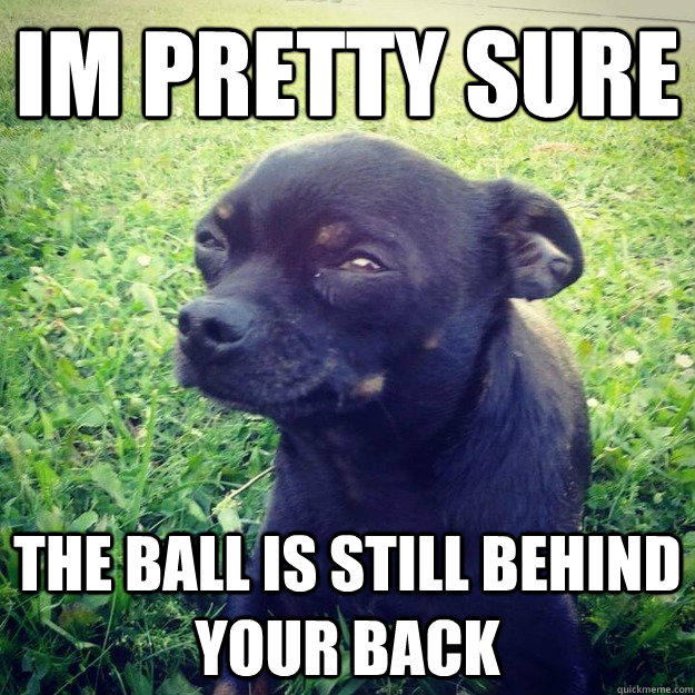 IM PRETTY SURE THE BALL IS STILL BEHIND YOUR BACK  Skeptical Dog
