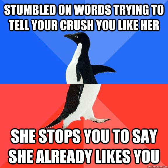 Stumbled on words trying to tell your crush you like her she stops you to say she already likes you - Stumbled on words trying to tell your crush you like her she stops you to say she already likes you  Socially Awkward Awesome Penguin