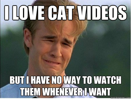 I love cat videos But I have no way to watch them whenever I want - I love cat videos But I have no way to watch them whenever I want  1990s Problems