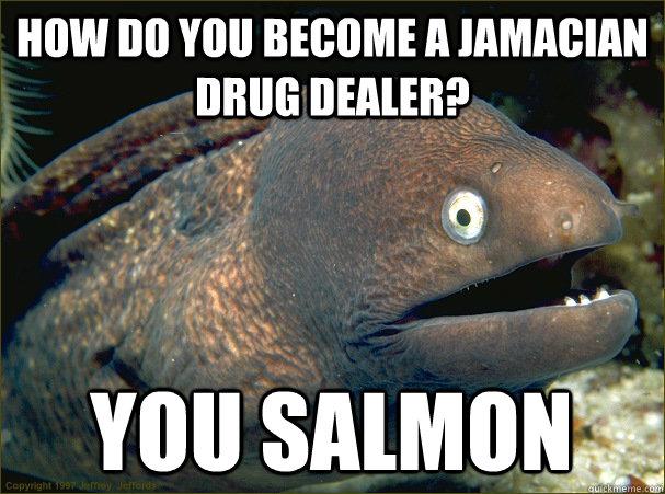 How do you become a Jamacian drug dealer? you salmon  Bad Joke Eel