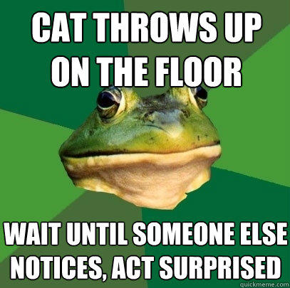 cat throws up on the floor wait until someone else notices, act surprised - cat throws up on the floor wait until someone else notices, act surprised  Foul Bachelor Frog