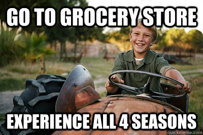 go to grocery store experience all 4 seasons